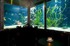 private area direkt am Aquarium und mit Blick hindurch in den Club.