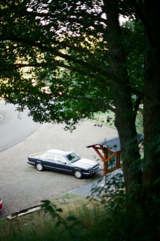An der Oleftalsperre - aus dieser Perspektive erkennt man sehr gut die klassischen Proportionen der traditionellen Jaguar-Linienführung.