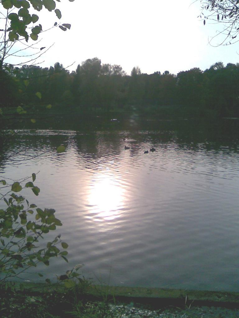 Dämmerung im Petersburger Park Pobedy