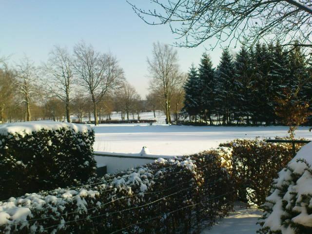 Winterlandschaft hinter unserem Haus, Januar 2009