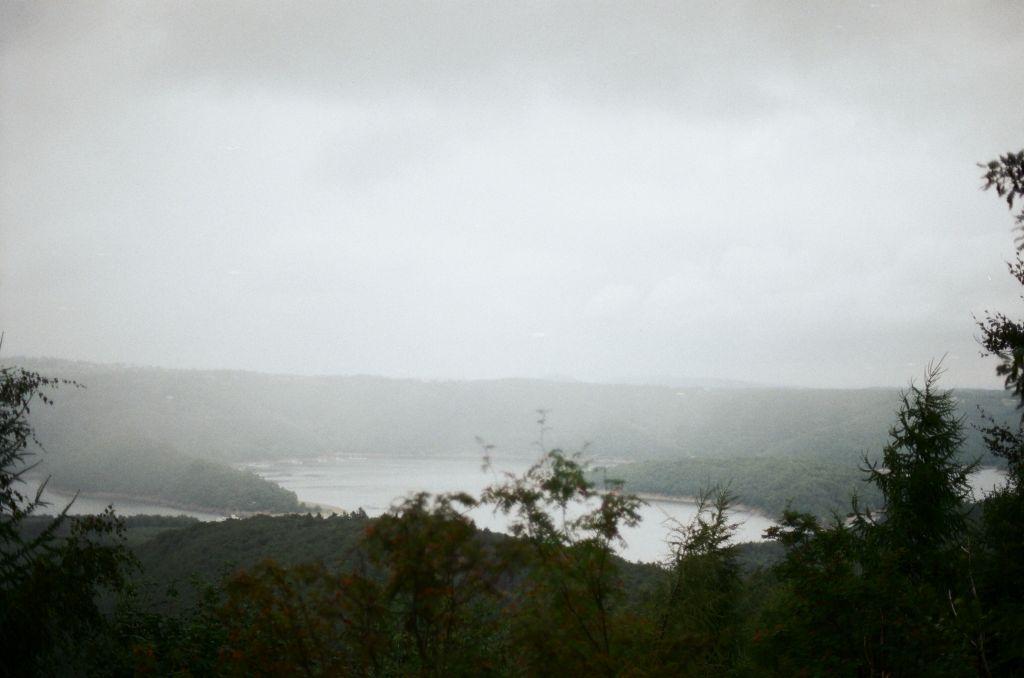 Blick vom Kermeter auf den Rursee bei feucht-nebligem Wetter