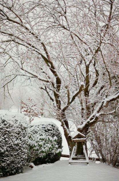 Im Winter sollen die Vögel bei uns hinterm Haus natürlich auch nicht verhungern.