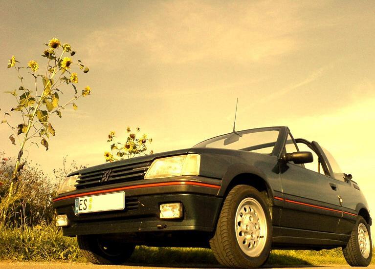 Mein Peugeot 205 CTI 1.9 [verkauft]
