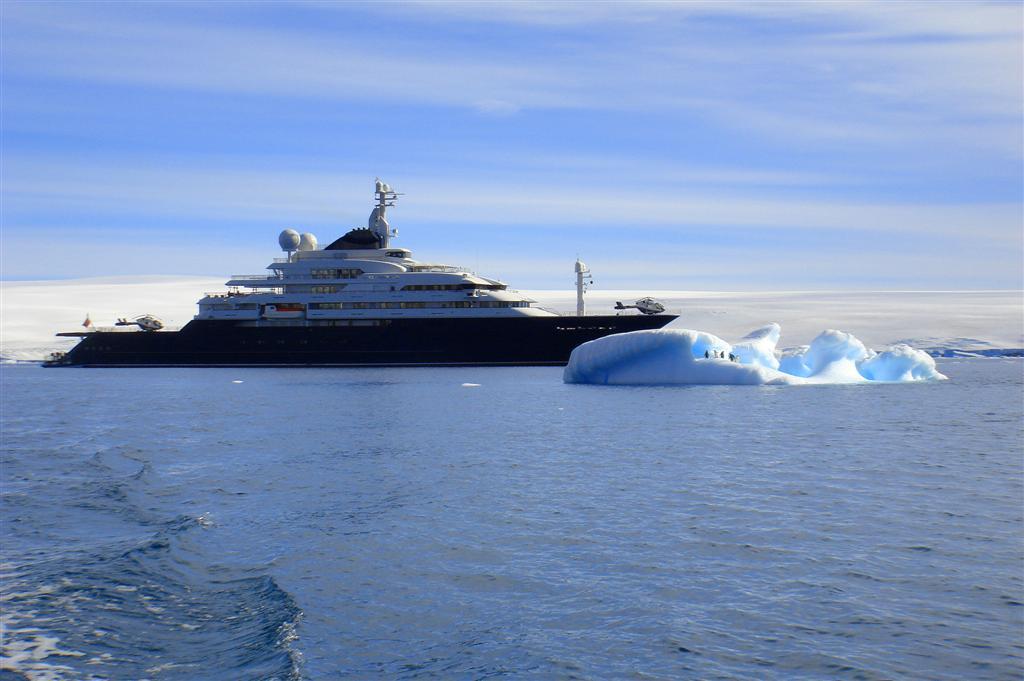 MY OCTOPUS in der Antarctis