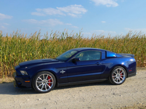 32_Ford Shelby Super Snake.png