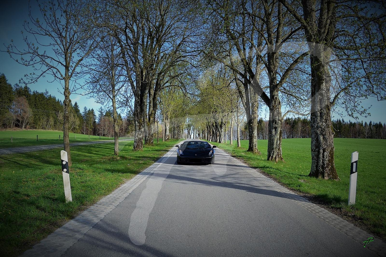 Lamborghini LP 520 Spyder